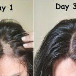 9 Cara Menebalkan Rambut dengan Bahan Alami, Rambut Sehat dan Kuat!